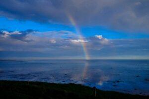 Rainbow in a dark day