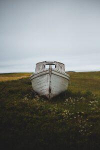 boat in a meadow